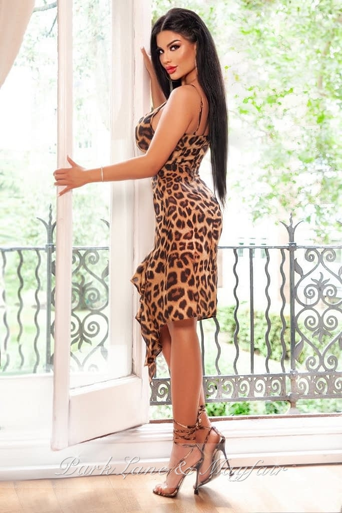 Escort Hayley in an elegant dress ready for a date